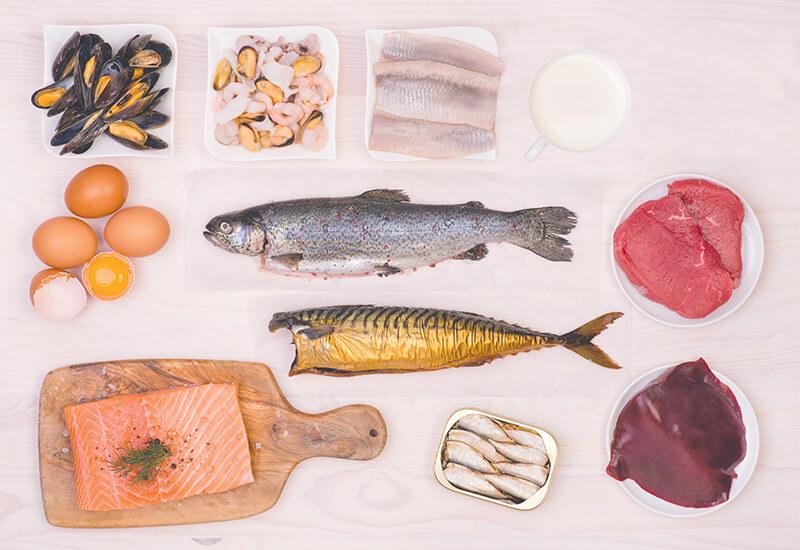Fuentes dietéticas de vitamina B12